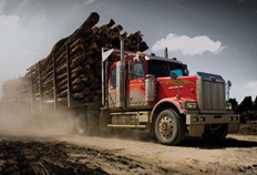 4900 Vocational Logging
