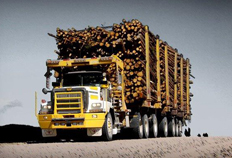 6900 Vocational Logging