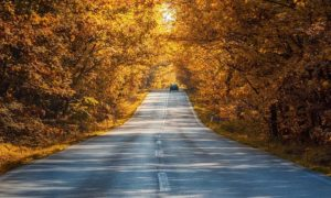 Safety Tips for Fall Truck Driving
